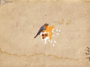 robin_wallpaper_by_godlev