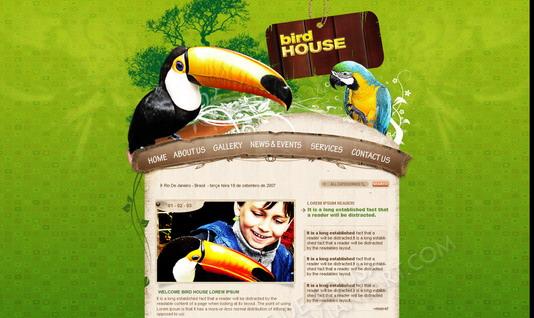 bird_house_by_everttdesousa_by_turokfreak