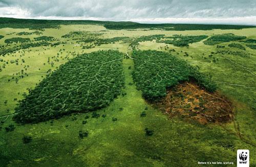 WWF Print Advertisement