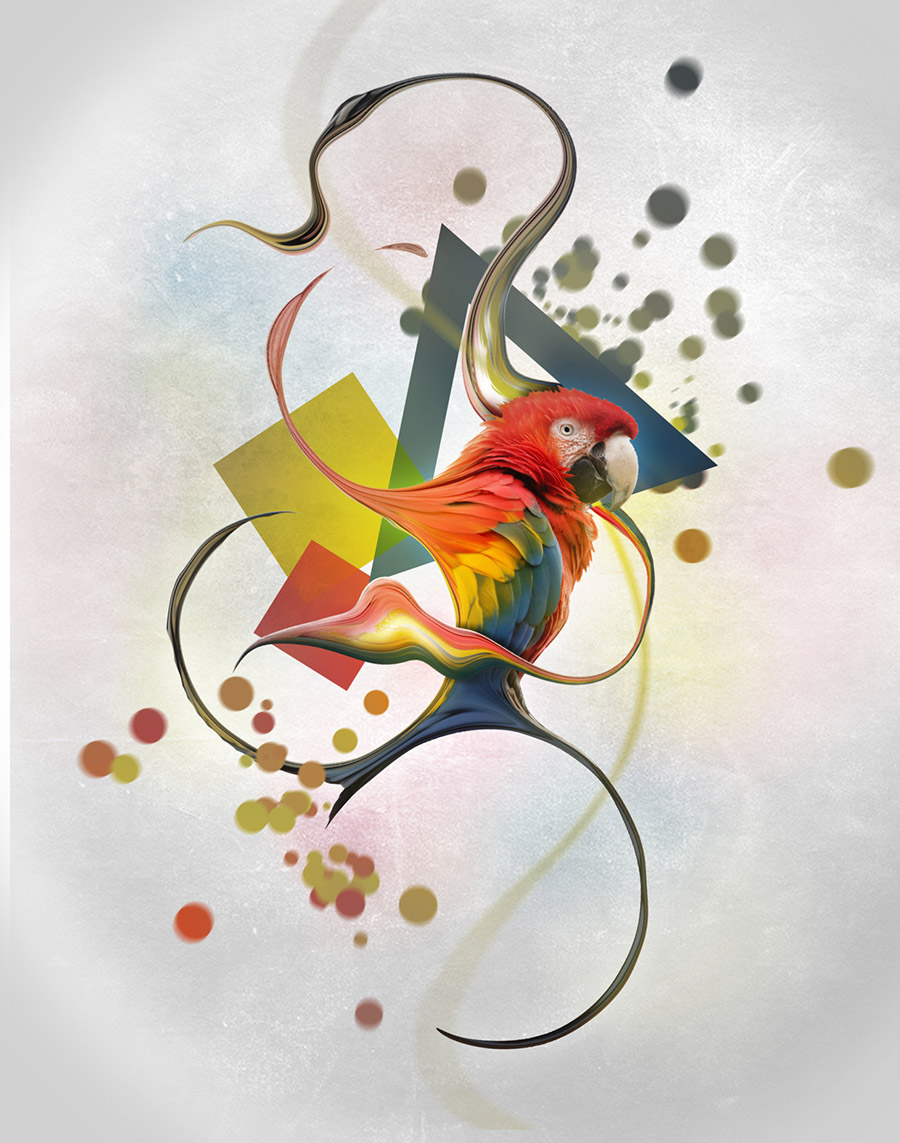 parrot fluid lines abstract art